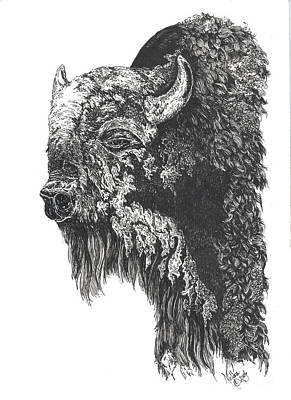 Buffalo In Spring Poster by Meldra Driscoll