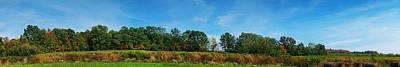 Bull Horn Creek Farm Wineyard New York Panoramic Photography Poster by Paul Ge