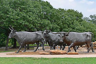 Bull Market Poster by Christine Till