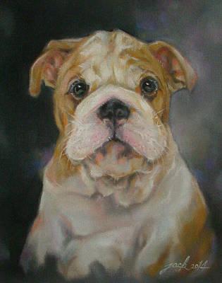 Bulldog Puppy Poster by Jack No War