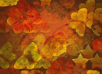 Butterfly Abstract 2 Poster by David Dehner