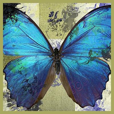 Butterfly Art - S01bfr02 Poster by Variance Collections