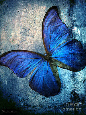 Butterfly Poster by Mark Ashkenazi