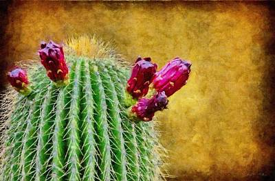 Cactus With Flowers Poster by Jeff Kolker