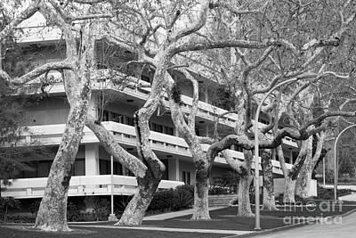 Cal Poly Pomona Landscape Poster by University Icons