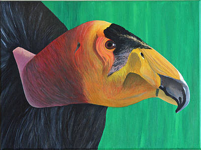 Californian Condor Poster by Aileen Carruthers