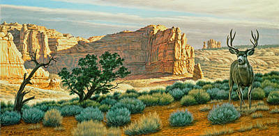 Canyon Country Buck Poster by Paul Krapf