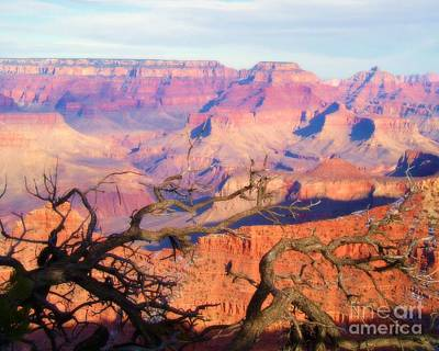 Canyon Shadows Poster by Janice Sakry