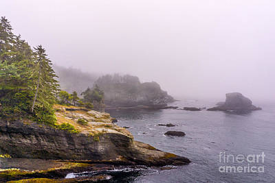 Cape Flattery Poster by Carrie Cole