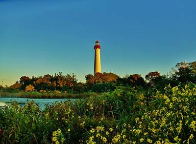 Cape May Lighthouse Above The Flowers Poster by Ed Sweeney