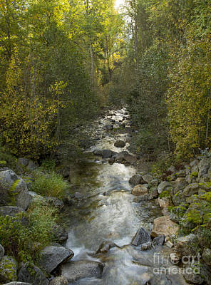 Caribou Creek Poster by Idaho Scenic Images Linda Lantzy