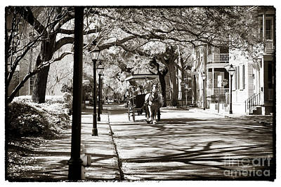 Carriage Ride In Charleston Poster by John Rizzuto
