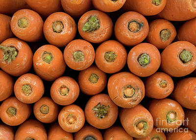 Carrots Poster by Rick Piper Photography