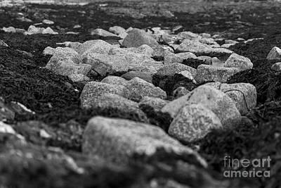 Castle Beach Rocks Poster by Brian Roscorla