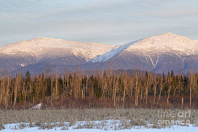 Castle Ravine - Presidential Range New Hampshire Poster by Erin Paul Donovan