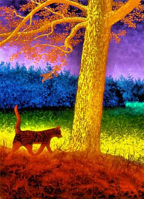 Cat In Rainbow Evening Poster by Genio GgXpress