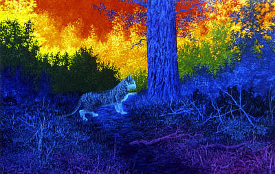 Rainbow Body Poster featuring the painting Cat In Rainbow Night by Genio GgXpress