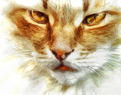 Cat Portrait - Drawing Poster by Daliana Pacuraru