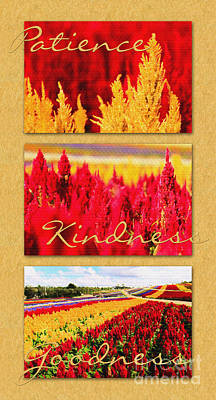 Celosia With Patience Kindness Goodness Poster by Beverly Claire Kaiya