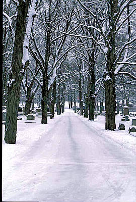 Cemetery In Snow Poster by Gail Maloney