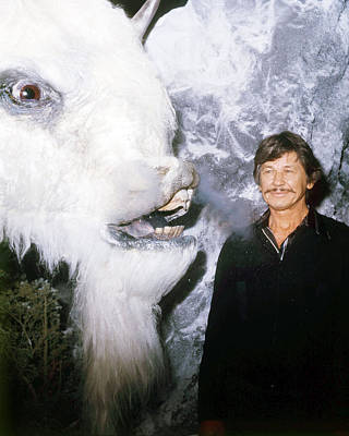 Charles Bronson In The White Buffalo  Poster by Silver Screen