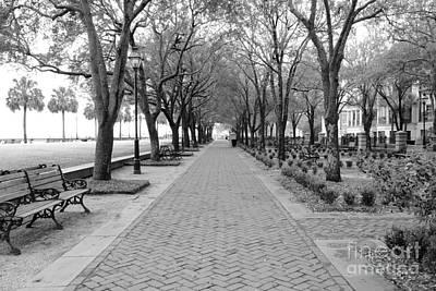 Charleston Waterfront Park Walkway - Black And White Poster by Carol Groenen