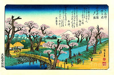 Cherry Blossoms And Mount Fuji 1838 Poster by Padre Art