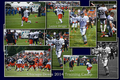 Chicago Bears Lb Lance Briggs Training Camp 2014 Collage Poster by Thomas Woolworth