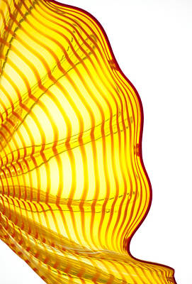 Chihuly Petals 3 Poster by CJ Middendorf