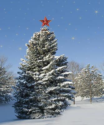 Christmas Tree Poster by Juli Scalzi