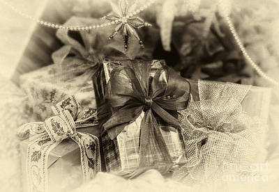 Christmasgift Under The Tree In Sepia Poster by Iris Richardson