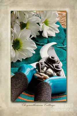 Chrysanthemum Cuttings Poster by John Edwards