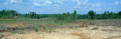 Clear Cutting In The Blue Ridge Poster by Panoramic Images