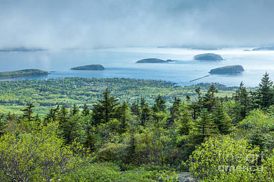 Clearing Fog Over Frenchman Bay In Acadia Poster by Susan Cole Kelly