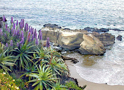 Cliffside Ocean View Poster by Elaine Plesser