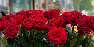 Close-up Of Red Roses In A Bouquet Poster by Panoramic Images