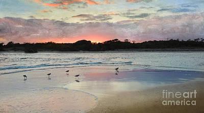 Coastal Beauty Poster by Betty LaRue