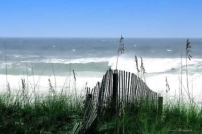 Coastal Desire Poster by Debra Forand
