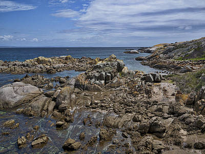 Coastline - Montague Island - Australia Poster by Steven Ralser