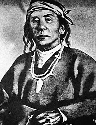 Cochise (c1812-1874) Poster by Granger