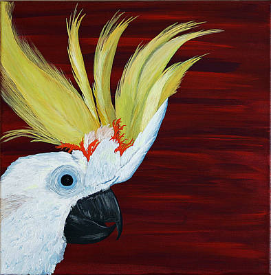 Cockatoo Poster by Aileen Carruthers
