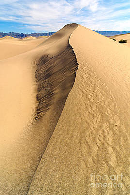 Collapsed Sand Dune Ridge In Death Valley National Park Poster by Jamie Pham