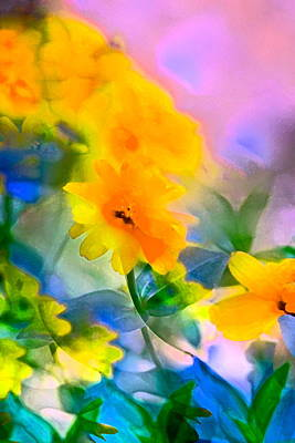 Color 105 Poster by Pamela Cooper