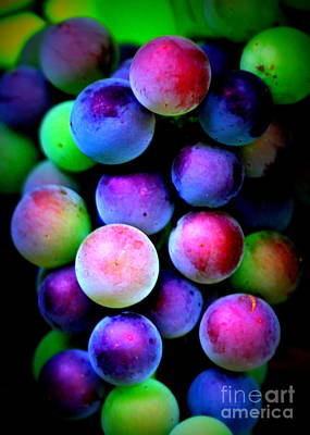 Colorful Grapes - Digital Art Poster by Carol Groenen