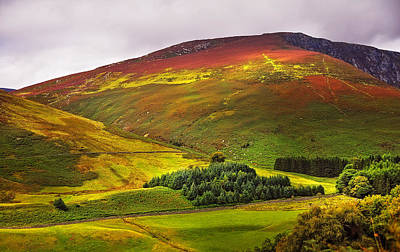 Colorful Wicklow Hills At Fall. Ireland Poster by Jenny Rainbow