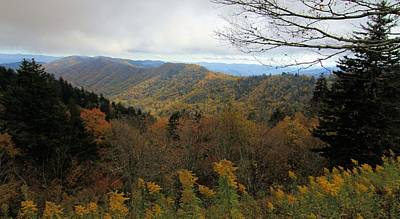 Colors Of October From Smoky Mountains Poster by Dan Sproul