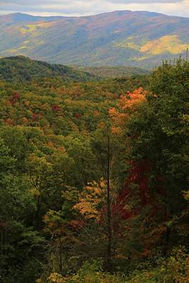 Colors Of The Smokies Poster by Dan Sproul