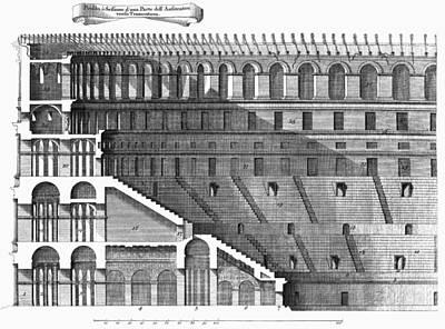 Colosseum: Cross-section Poster by Granger
