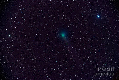 Comet Lovejoy Poster by John Chumack