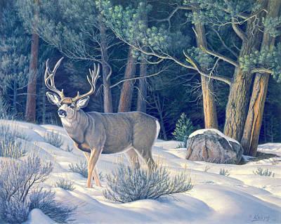 Confrontation - Mule Deer Buck Poster by Paul Krapf